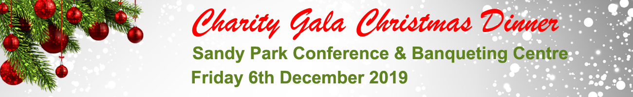 Website Christmas Gala Banner2